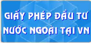thu-tuc-thanh-lap-cong-ty-nuoc-ngoai
