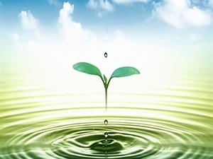Giấy phép môi trường